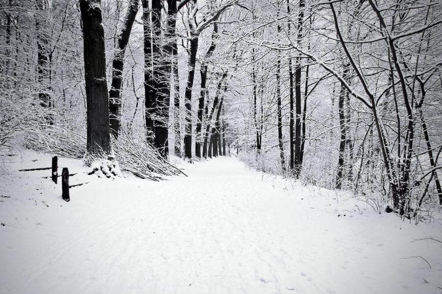 Bianco come la neve!