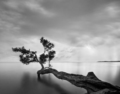 """Il """"capovolgimento della realtà"""": la slow-photography di Moises Levy"""