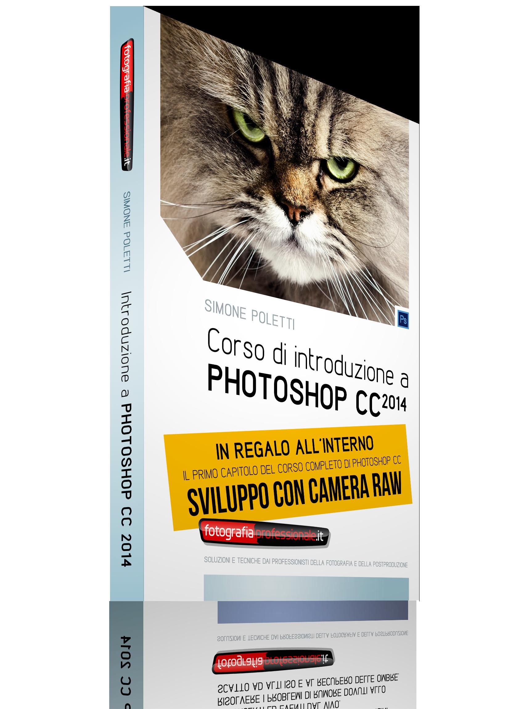 Corso di Introduzione a Photoshop CC 2014 + Camera Raw