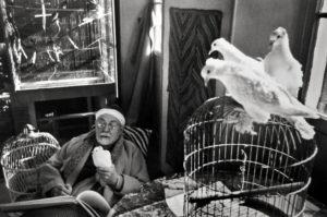 Matisse © H.Cartier Bresson