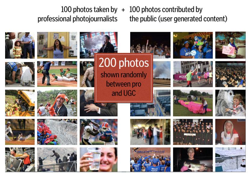 Alcune delle foto mostrate nella ricerca