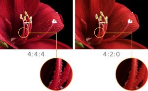 Differenza tra 4:4:4 e 4:2:0