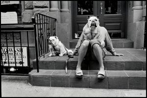 Elliott Erwitt, New York City, 2000