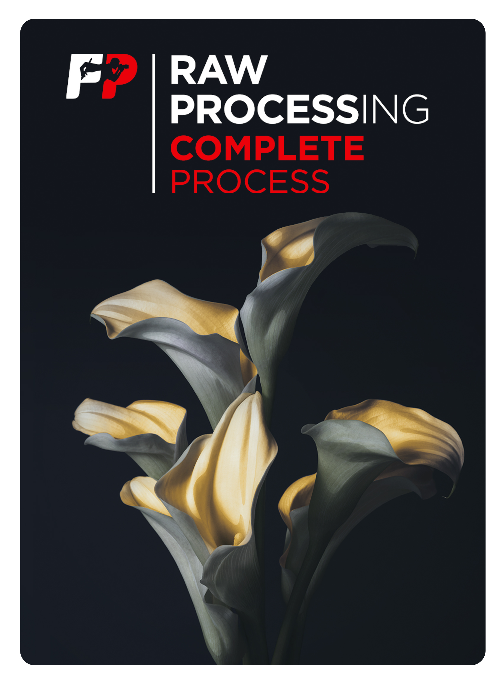 Raw Processing Complete
